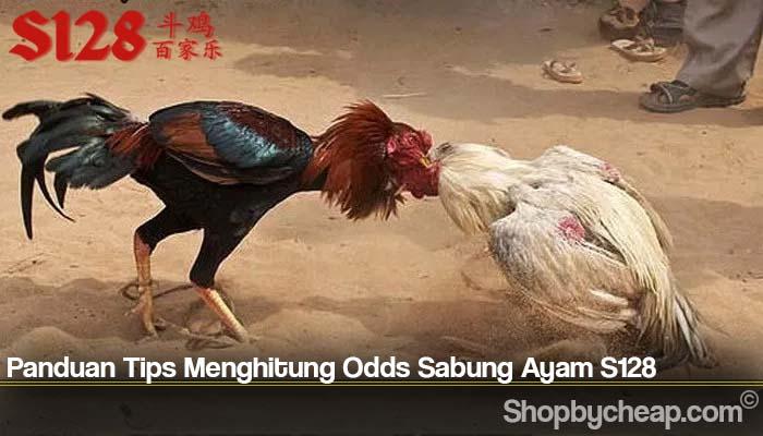 Panduan Tips Menghitung Odds Sabung Ayam S128