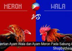 Pengertian Ayam Wala dan Ayam Meron Pada Sabung Ayam